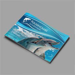 Маркетинг-кит Казанского дельфинария