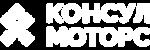 Маркетинг-кит для Консул Моторс